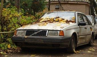 Программа утилизации в России поднимает дилерские продажи!