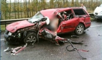 Под Пензой из-за кабана в ДТП пострадали пять человек
