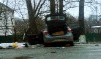 В Подольске в лобовом столкновении погибли два человека