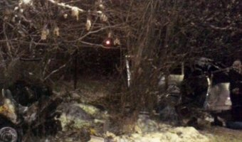 В Кинешме в ДТП при столкновении со столбом погибли два человека