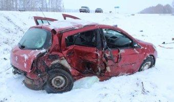 В Татарстане из-за разной «резины» погибла автоледи