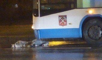 Пешеход оказался под колесами троллейбуса на Новоизмайловском проспекте