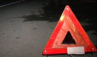 В Омской области два пешехода погибли под колесами грузовика