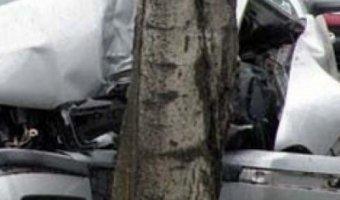 Водитель Volkswagen погиб, врезавшись в дерево, на трассе Правдинск - Дружба – Знаменск