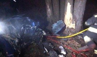 В Тольятти в ДТП с деревом погибли три человека