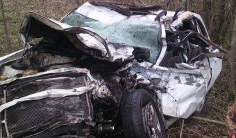 В Лужском районе в ДТП с лесовозом погибли три человека