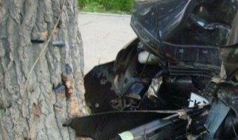 В Крыму Ford въехал в дерево: трое погибших