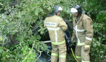 В Лискинском районе в ДТП погибли два человека