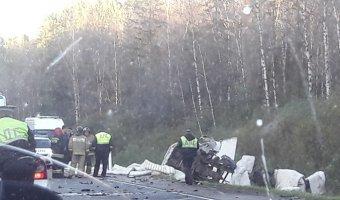 В ДТП в Гатчинском районе погиб водитель Renault