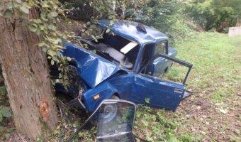 В Рославльском районе ВАЗ сбил пешехода и врезался на дерево