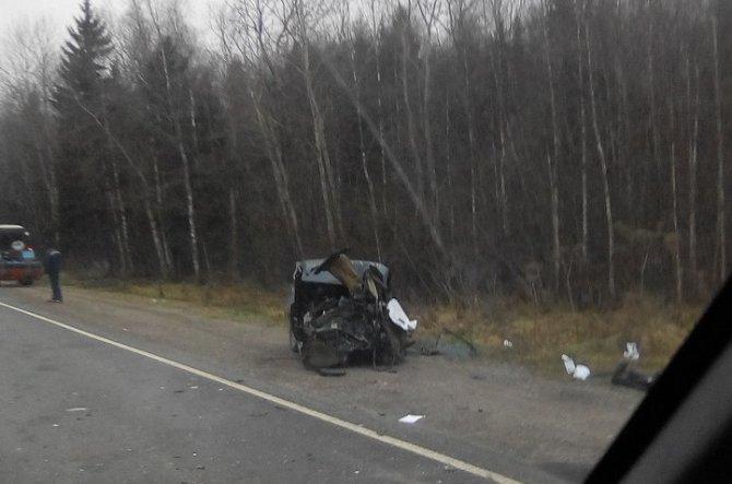 В ДТП с фурой под Тосно погибли два человека (4).jpg