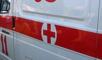 На Урале в ДТП с лосем погиб годовалый сын полицейского