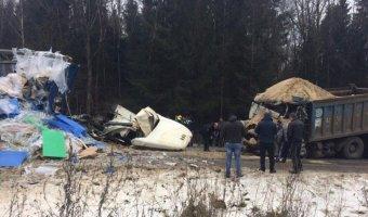 В ДТП с двумя фурами в Подмосковье погибли оба водителя