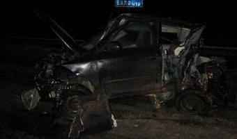 В ДТП в Удмуртии погибли два человека