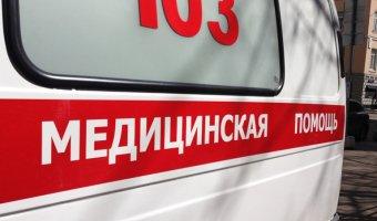 В Нижневартовском районе в ДТП с лосем погиб человек