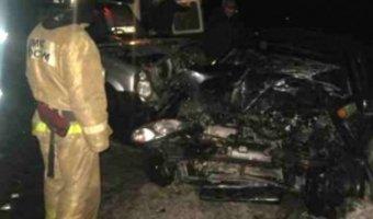 В Нижегородской области в ДТП погиб годовалый малыш
