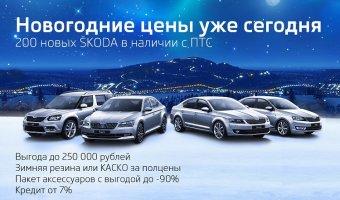 Новогодние цены уже сегодня: 200 автомобилей ŠKODA в наличии!