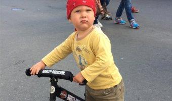 Велодорожки по всему Петербургу - возможно ли такое?
