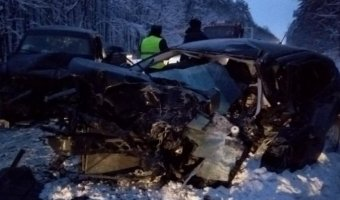 В ДТП под Рязанью погибли два человека