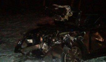В больнице скончалась девочка, оставшаяся сиротой после ДТП с волком на трассе «Кола»