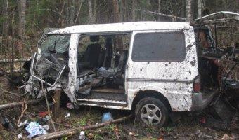 В Киришском районе мать уснула за рулем авто - погиб ребенок, двое детей пострадали