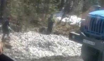 На Сахалине в результате ДТП на дороге оказалось несколько тонн мойвы