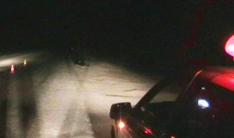 В Екатеринбурге водитель насмерть сбил человека и скрылся
