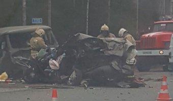 В массовом ДТП на трассе «Кола» погибли две женщины