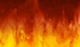 Водитель Daewoo Matiz заживо сгорел в машине после ДТП в Ленобласти