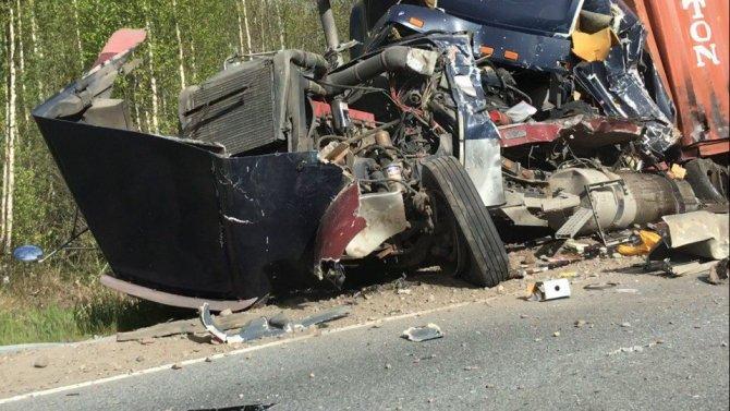 В ДТП под Лодейным Полем погиб водитель грузовика (1).jpg