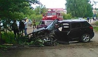 Три человека пострадали в ДТП с деревом в Прикамье