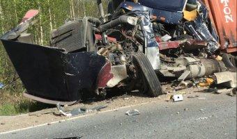 В ДТП под Лодейным Полем погиб водитель грузовика