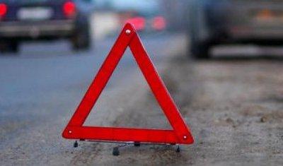 По вине шмеля два человека пострадали в ДТП под Ростовом