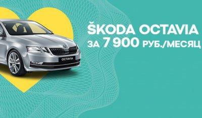 ŠKODA OCTAVIA вызывает восторг всего за 7 900 р. в месяц