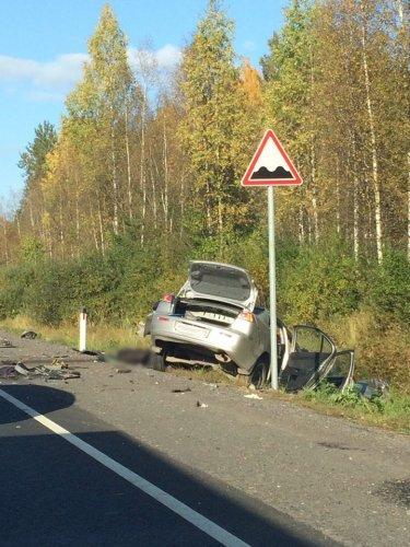 Водитель Mitsubishi погиб в ДТП в Лужском  районе (6).jpg