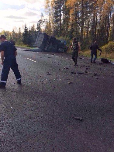 Водитель Mitsubishi погиб в ДТП в Лужском  районе (3).jpg