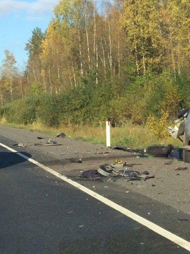 Водитель Mitsubishi погиб в ДТП в Лужском  районе (5).jpg