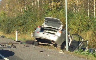 Водитель Mitsubishi погиб в ДТП в Лужском  районе