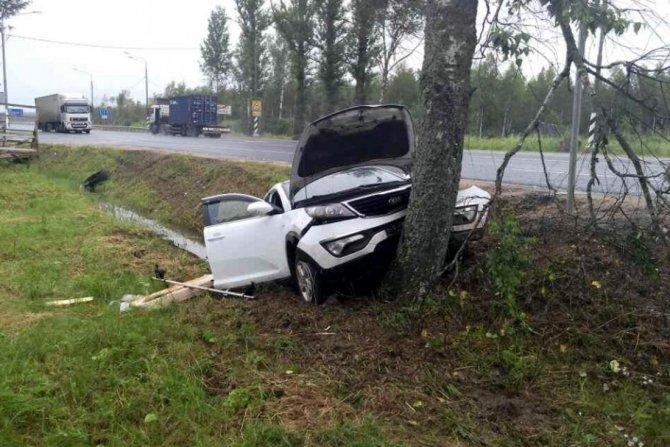 Под Ростовом KIA врезалась в дерево – погиб пассажир