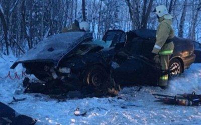 Два человека погибли в ДТП с микроавтобусом в Томской области