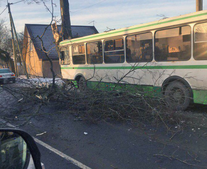 Автобус попал в ДТП на Дороге Жизни в Ленобласти есть пострадавшие (3)