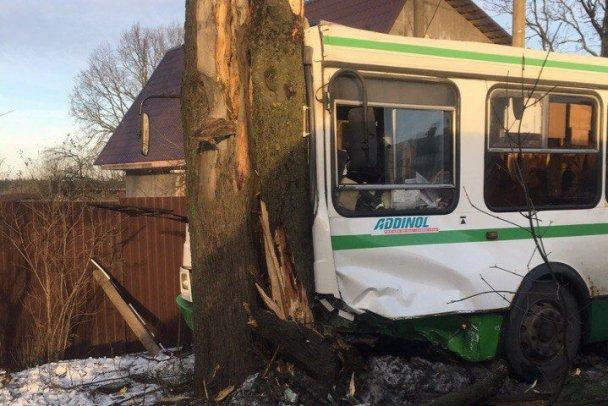 Автобус попал в ДТП на Дороге Жизни в Ленобласти есть пострадавшие (1)