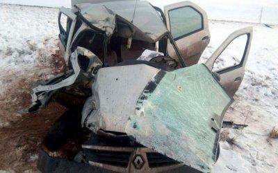 Под Астраханью из-за лошадей на трассе в ДТП погиб человек