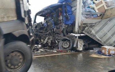 В ДТП с грузовиками на трассе «Кола» погиб человек