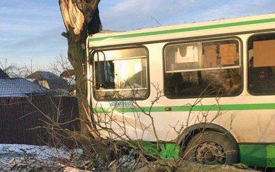 Автобус попал в ДТП на Дороге Жизни в Ленобласти: есть пострадавшие