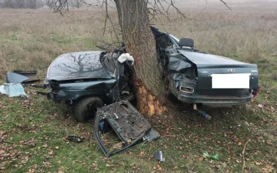 На Ставрополье «Лада» врезалась в дерево – водитель погиб