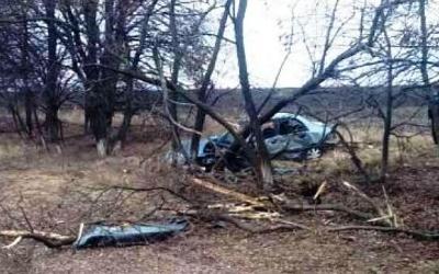 2-летний мальчик погиб в ДТП под Курском