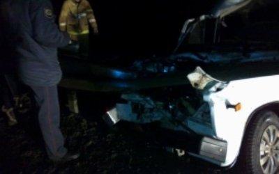 Четыре человека погибли в массовом ДТП на трассе М-5 под Пензой