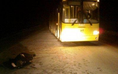 Автобус насмерть сбил человека под Смоленском