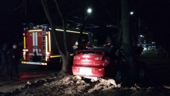 В Коврове иномарка врезалась в дерево - погиб пассажир
